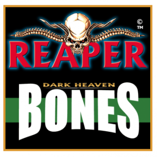 Reaper Bones Miniatures