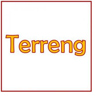 Terreng