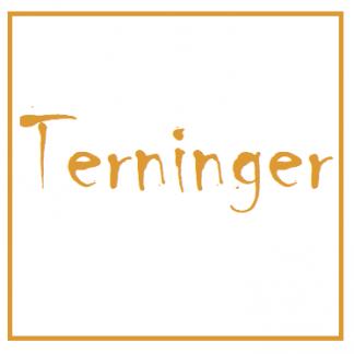Terninger